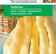 Seminte fasole Ecaterina (45g, 250g, 500g)