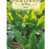 Seminte Stevia (Rumex patientia) 0.3g