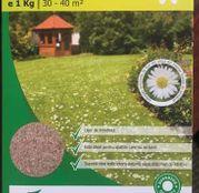 Seminte de gazon cu flori 1Kg