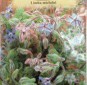 Seminte Limba mielului (Borago officinalis) 2g