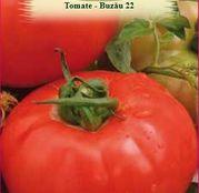 Seminte Tomate Buzau 22 0.5g