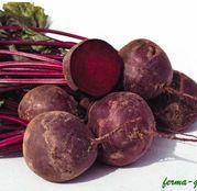 Seminte sfecla rosie Boro F1
