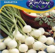 Seminte ceapa Barletta 2g