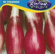 Seminte ceapa Rossa Lunga di Firenze 2g