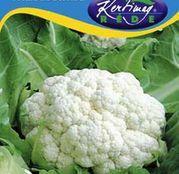 Seminte conopida Toscano-Precoce 1g