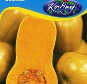 Seminte dovleac pentru copt Orange 1g