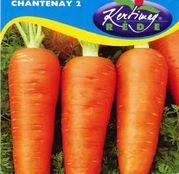 Seminte morcov Chantenay 2 4g