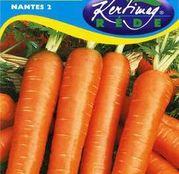Seminte morcov Nantes 2 5g
