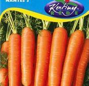 Seminte morcov Nantes 3 5g