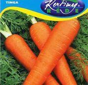 Seminte morcov Tinga 3g