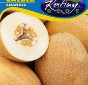 Seminte pepene galben Ananász 2g