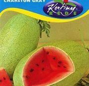Seminte pepene verde Charleston Gray 2g
