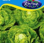 Seminte salata Lento 2g