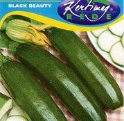 Seminte dovlecel zucchini Black Beauty 4g