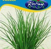 Seminte Ceapa pentru frunze / de tuns 1g