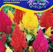 Seminte flori Creasta Cocosului (Celosia argentea plumosa) amestec de culori 0.5g