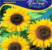 Seminte flori Floarea Soarelui decorativa Holdfeny (Helianthus annuus) 2g