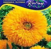 Seminte flori Floarea Soarelui decorativa SonnenGold pitica (Helianthus annuus) 2g