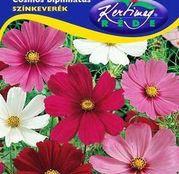 Seminte flori Mararite japoneze / Fluturasi (Cosmos bipinnatus) amestec de culori 1.5g