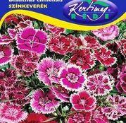 Seminte flori Garoafe chinezesti (Dianthus chinensis) amestec de culori 0,5g