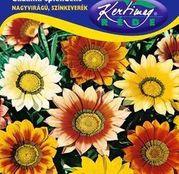 Seminte flori Gazanie (Gazania splendens) amestec de culori 0.25g