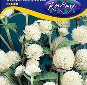 Seminte flori Gomfrena (Gomphrena globosa) alba 0.25g