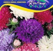 Seminte flori Ochiul boului (Callistephus chinensis) Tufa Americana - amestec de culori 1g