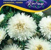 Seminte flori Ochiul boului (Callistephus chinensis) Princess - alb 1g