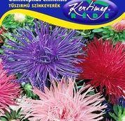 Seminte flori Ochiul boului (Callistephus chinensis) Strahlen amestec de culori 1g