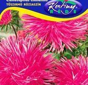 Seminte flori Ochiul boului (Callistephus chinensis) Strahlen roz 1g