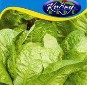 Seminte salata Marula (Romana) 2g