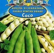 Seminte fasole Coco 50g