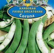 Seminte fasole Corona 50g