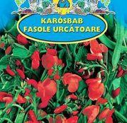 Seminte fasole Rotblühende 50g