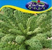 Seminte varza creata pentru frunze Leveleskel 2g
