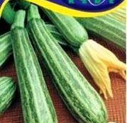 Seminte dovlecel zucchini Striato di Italia 3g