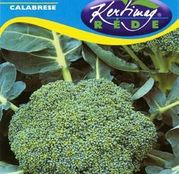 Seminte Broccoli Calabrese 2g