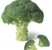 Seminte Broccoli Agassi F1