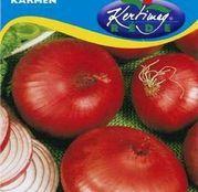 Seminte ceapa Karmen 2g