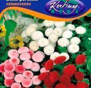 Seminte flori Banutei (Bellis perenis) amestec de culori 0,25g