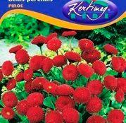 Seminte flori Banutei (Bellis perenis) rosii 0,20g