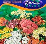 Seminte flori Coada soricelului (Achilea millefolium) amestec de culori 0.25g