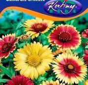 Seminte flori Fluturei / Cocarde (Gaillardia aristata) amestec de culori 1g