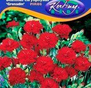 Seminte flori Garoafe Grenadin (Dianthus caryophyllus) rosii 0,25g