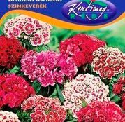 Seminte flori Garoafe turcesti (Dianthus barbatus) amestec de culori 0,5g