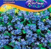 Seminte flori Nu ma uita (Myosothis sylvatica) albastra 0.25g