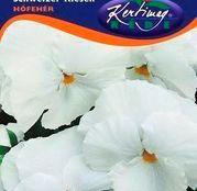 Seminte flori Panselute (Viola x witrockiana) albe 0,25g