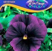 Seminte flori Panselute (Viola x witrockiana) mov 0,25g
