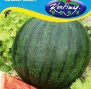 Seminte pepene verde Sugar Baby 2g