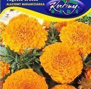 Seminte flori Craite pitice (Tagetes erecta) Portocalii 1g